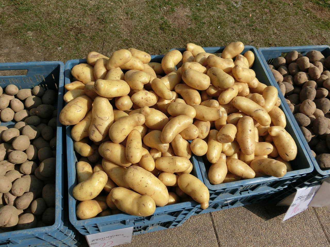 potatoes-377531_1280