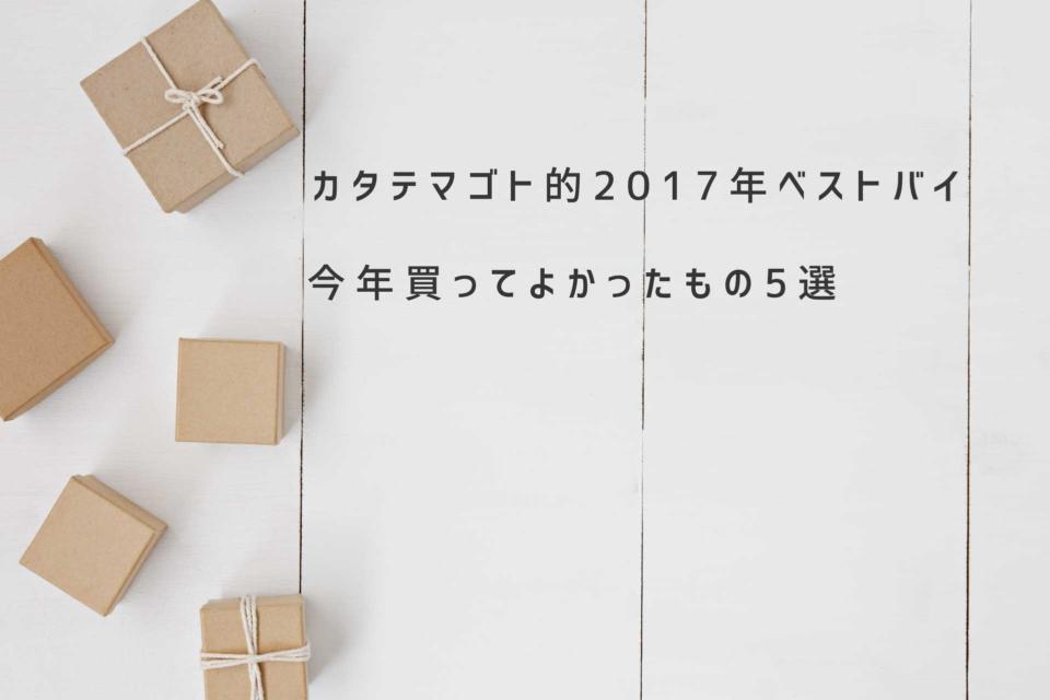 2017年ベストバイ 今年買って良かった革小物やガジェット5選をここで紹介し2017年を振り返ろうと思う。